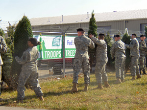 trees_troops